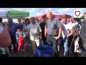 Kondycjonowanie sadzonek truskawki na Letnich Warsztatach z Grupą Truskawkową