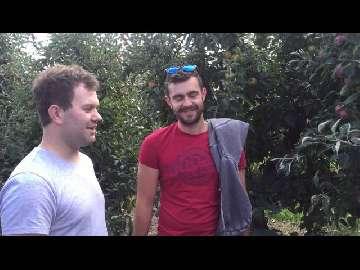 uprawa owoców