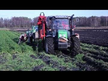ceny na giełdach rolnych