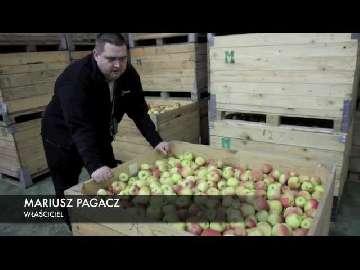 Przechowywanie jabłek -5 miesięcy. Mariusz Pagacz.
