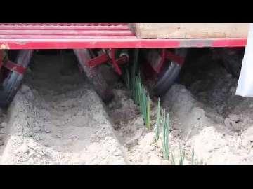 środek do zwalczania chwastów w trawie