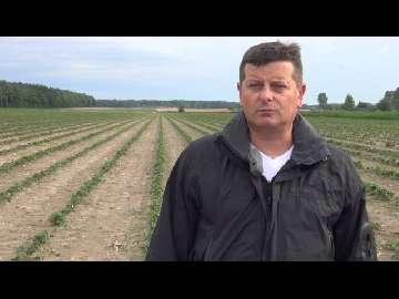 Demo Farma Grupy Truskawkowej część II b