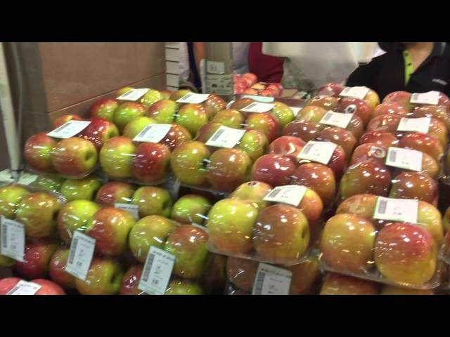 Jabłka na Borneo cz. 1.