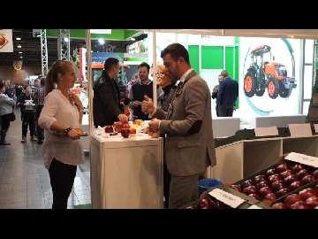 Jak należy sprzedawać jabłka MTAS 2017