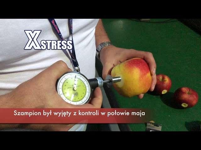 choroby jabłoni opryski