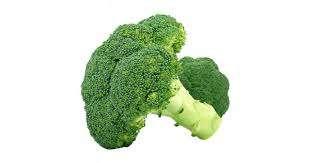 wczesne odmiany brokuła