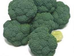 zgorzel brokuła