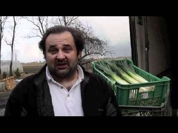 notowania zbóż 2013