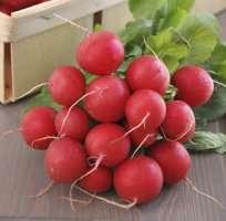 allegro ciagniki rolnicze uzywane ursus
