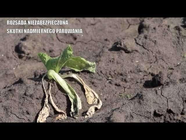 ogłoszenia rolnicze francja