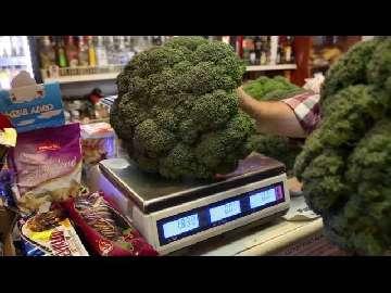 Brokuł 2,8 kg.